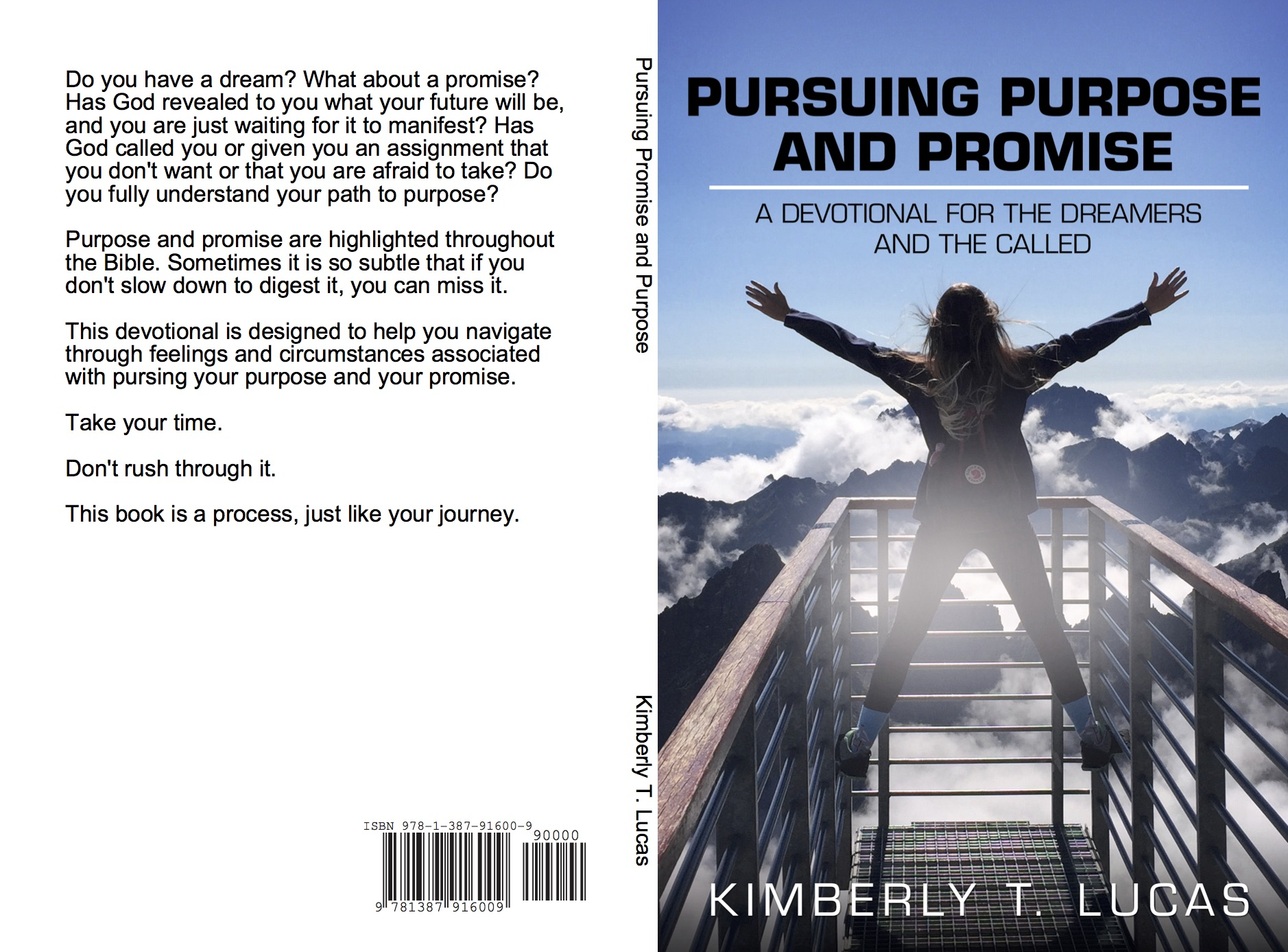 Pursuing Promise Cover
